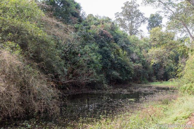southern part of moat around Ku Sampan Ka Khmer ruin