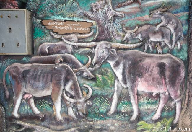 picture of herd of buffalo on Wat Pho Nontan meditation hall