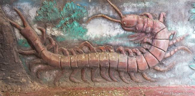 picture of centipede on Wat Pho Nontan meditation hall