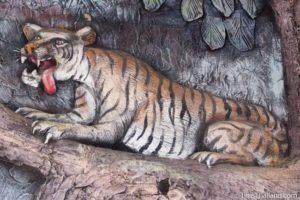 picture of tigeron Wat Pho Nontan meditation hall