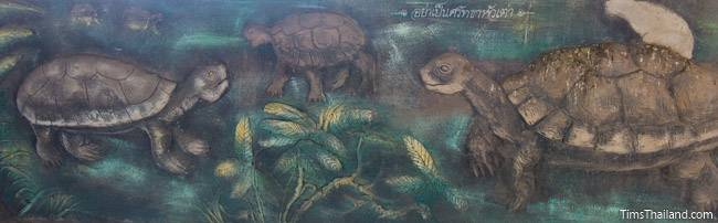 picture of turtles on Wat Pho Nontan meditation hall