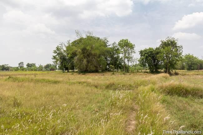 grove for Sop Namman Khmer ruin