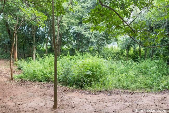 pond at Prang Sra Pleng Khmer ruin