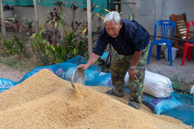 making rice pile at Boon Berk Bahn