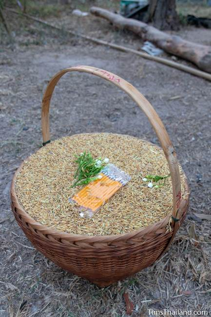 basket of rice for Boon Berk Bahn