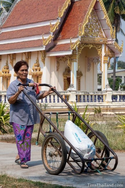 woman bringing rice to the temple in a push cart