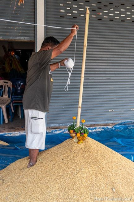 man hanging sai sin sacred thread on pole in rice pile