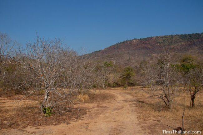 road leading toward a mountain