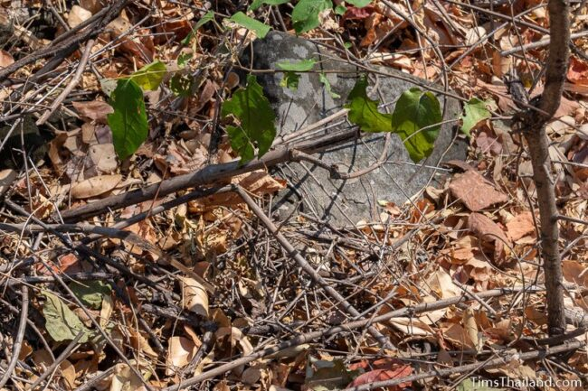 corner of lone sandstone block poking out of the dirt