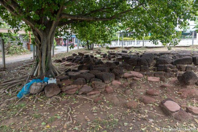 blocks laying around on the ground under a tree