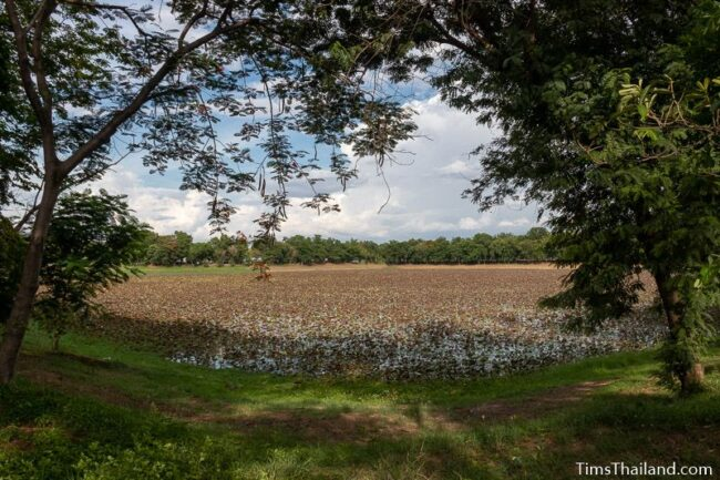 wide view of baray