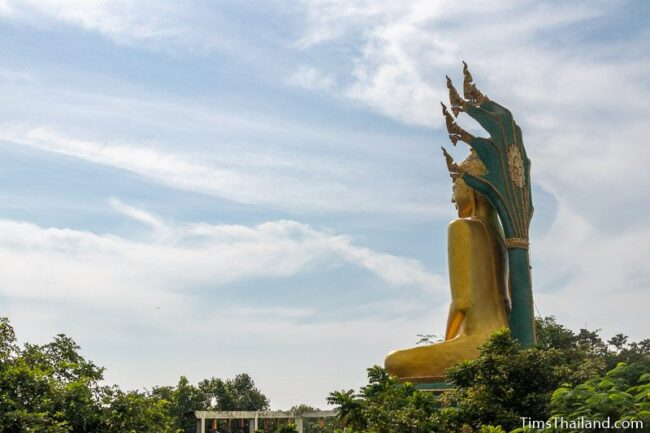 side view of big Buddha