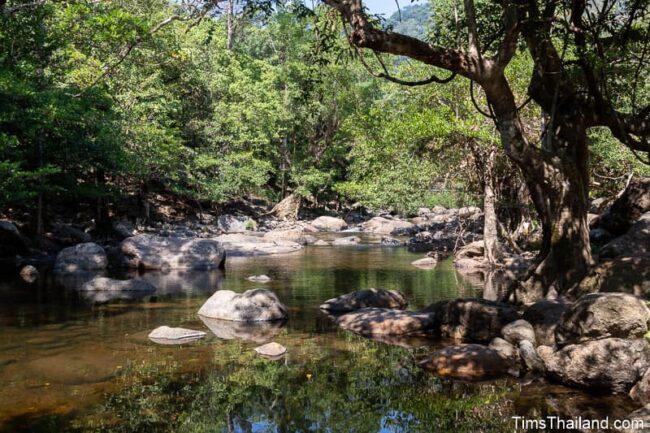small rocky stream