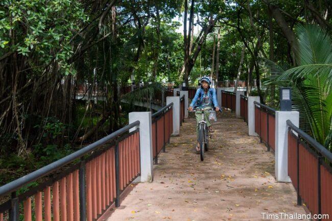 woman biking on elevated path through a park
