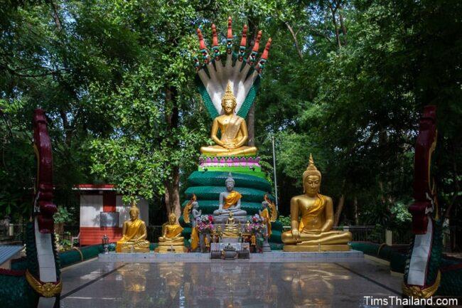 Buddha statues outdoors