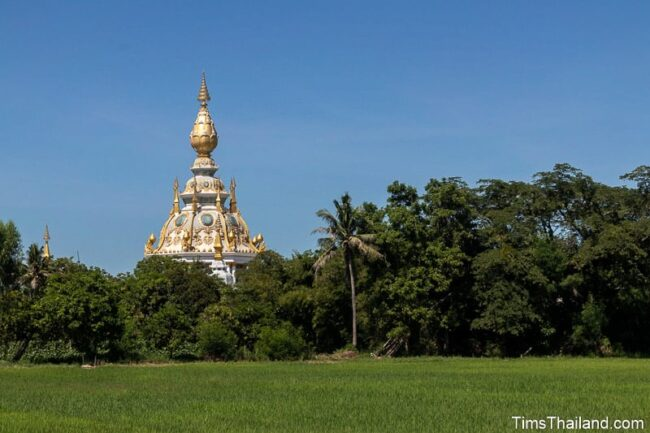 stupa at the back of a rice paddy