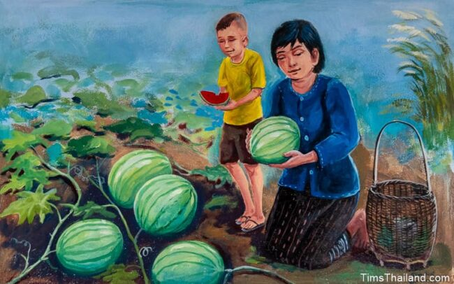 woman and boy picking watermelons